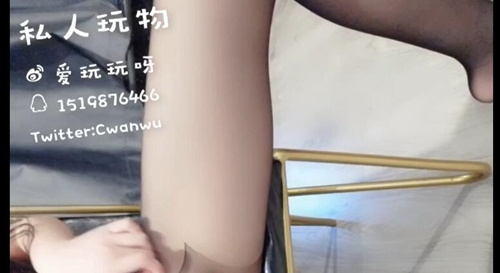 私人玩物-最新8.23黑丝情趣后续紫薇(3V/1.01G)